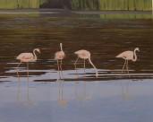 """""""Fenicotteri"""", Dipinto ad olio su legno, misure 55 x 67 cm, Anno 2011"""